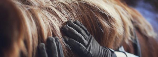 Haarlinge-fullsize-1100px