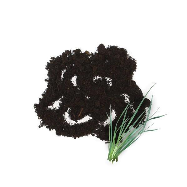 Thomasan Rasenerde oben mit Blume