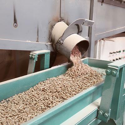 Holzpellets Herstellung