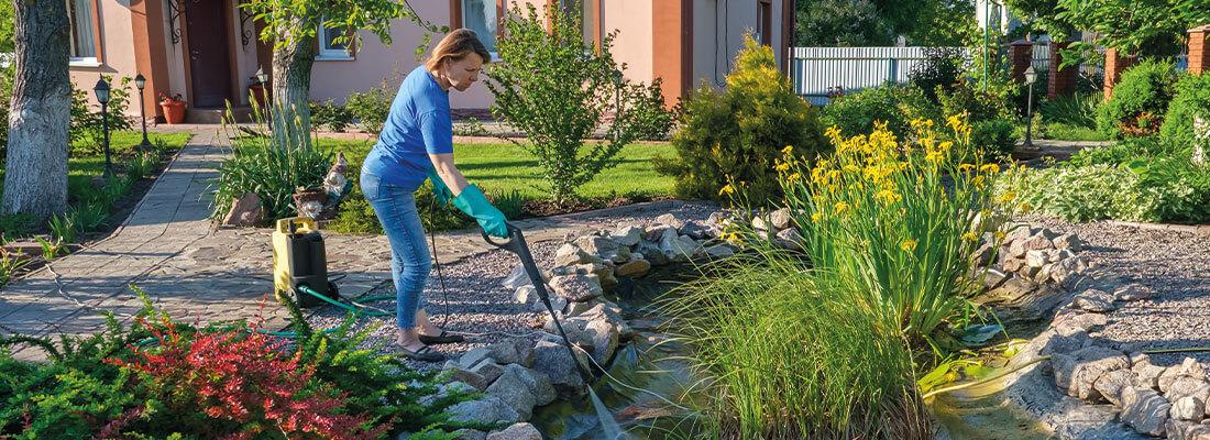 Gartenteich pflegen