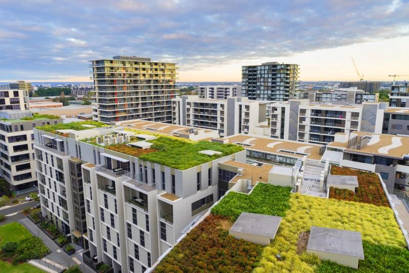 Blähton - Dachgarten gestalten