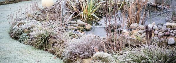 Winter_Gartenteich_fullsize1