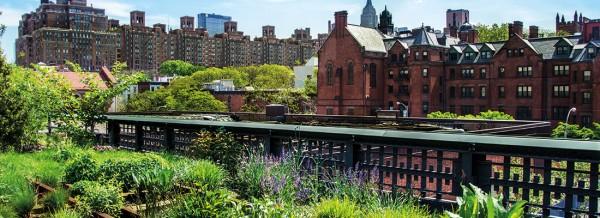 urban_garden_fullsize1