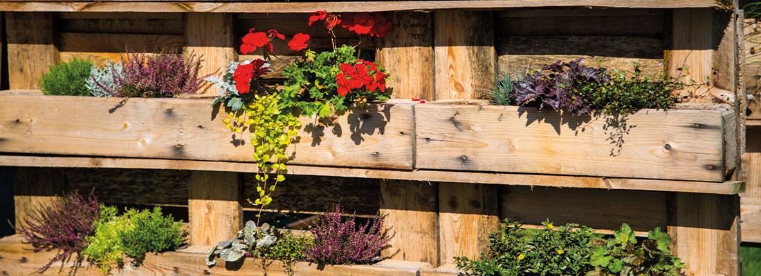 Paletten und Pflanzen auf dem Balkon