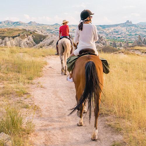 Pferdewirt Spezialritt