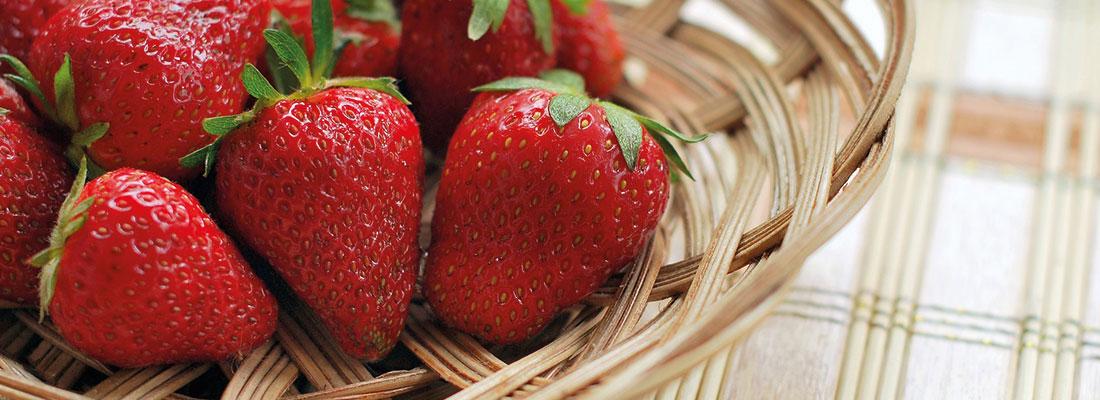 Hochbeet Erdbeeren